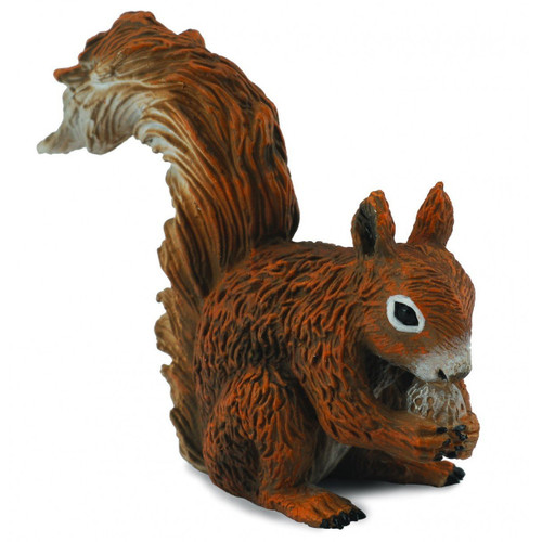 Red Squirrel Eating CollectA