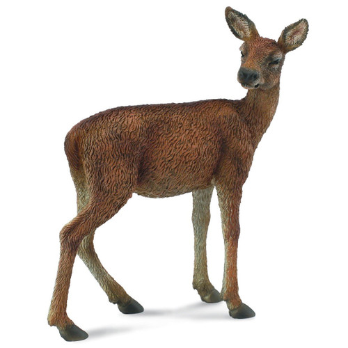 Collecta Red Deer Hind 2011