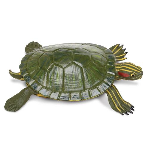 Red-Eared Slider Turtle Jumbo