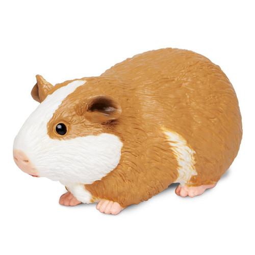 Guinea Pig Jumbo