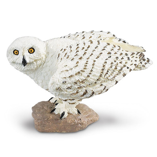 Snowy Owl Safari Ltd