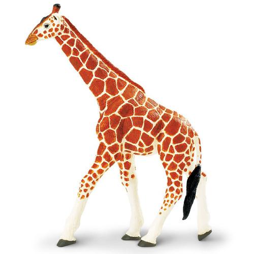 Reticulated Giraffe Jumbo