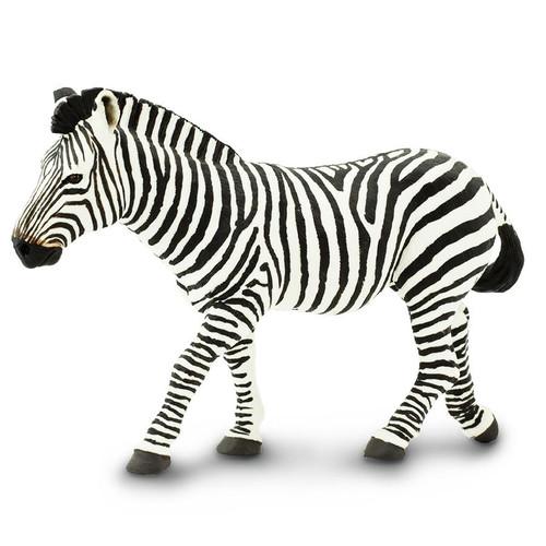 Zebra Jumbo