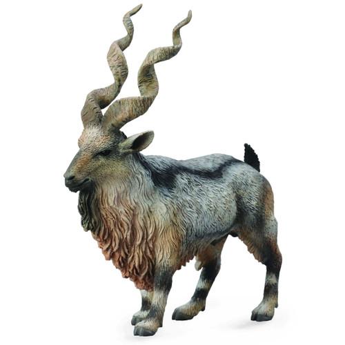 Tadjik Markhor Middle Eastern Wild Goat CollectA