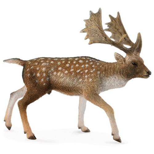 Fallow Deer Male CollectA