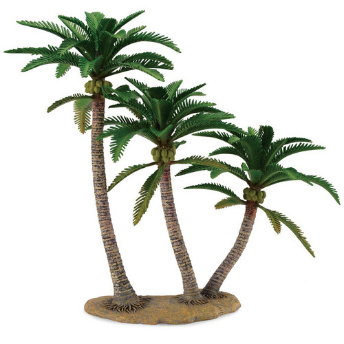 Coconut Palm CollectA