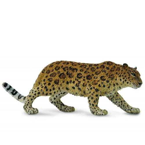 Leopard Amur CollectA