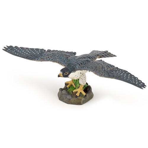 Hawk 2015