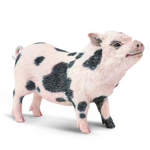 Pot Bellied Pig Jumbo