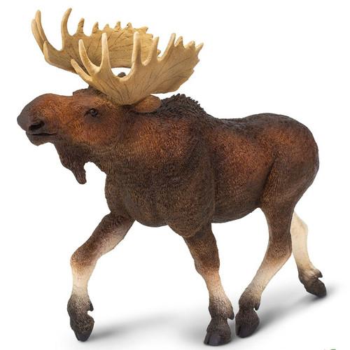 Moose Jumbo