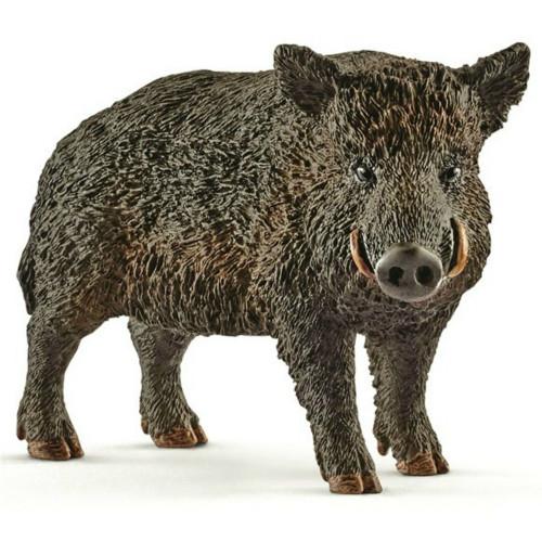 Wild Boar 2017