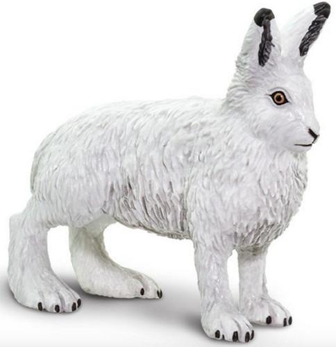 Arctic Hare Safari