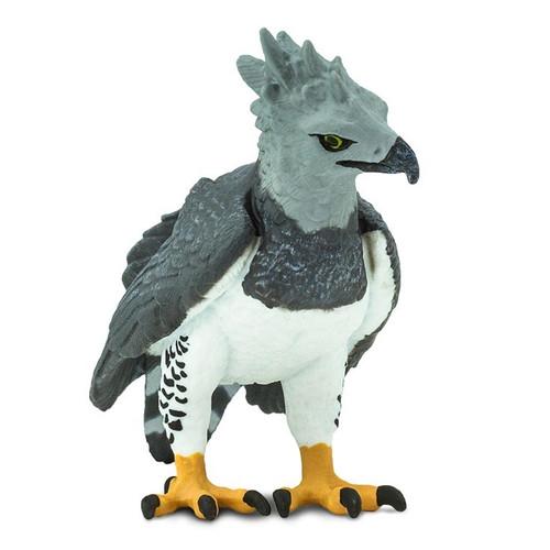 Harpy Eagle Safari