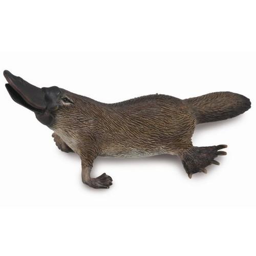 Platypus CollectA