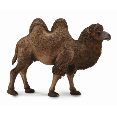 Bactrian Camel CollectA