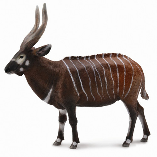 Bongo Antelope CollectA