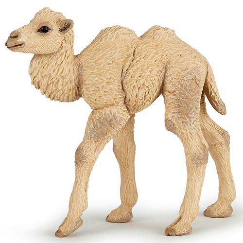 Camel Calf Papo