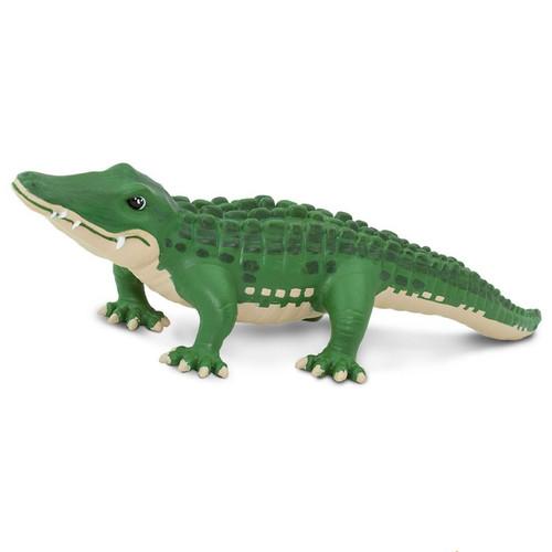 Bernie the Alligator
