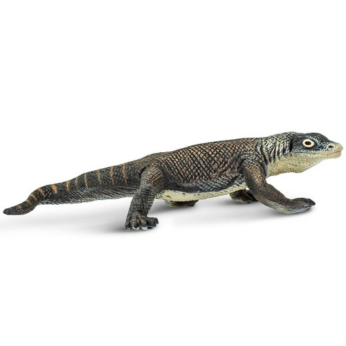 Komodo Dragon Safari Ltd