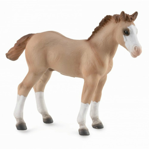 Quarter Foal Red Dun