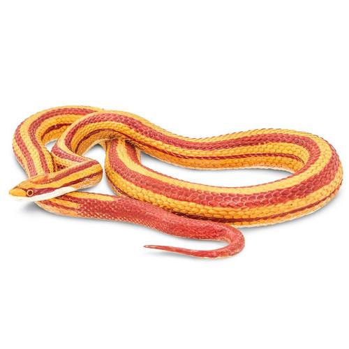 Corn Snake Jumbo