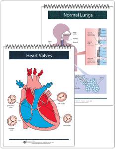 Cardio/Pulmonary Flip Cards