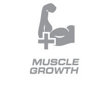 Whey Protein Bar Muscle Growth