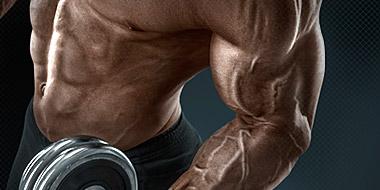 Get Big Muscle
