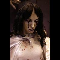 Animated Life Size La Llorona Spirit Ghost Corpse Halloween Prop