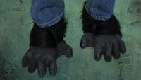 Gorilla Black Chimp Monkey Ape Shoe Covers Halloween Costume Feet Accessories Shoe Covers