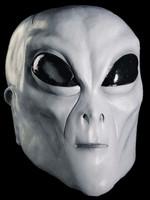 Alien Extraterrestrial Grey ET UFO Creature Adult Halloween Costume Mask