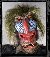 Extremely Realistic Baboon Ape Moving Mouth Halloween Mask Costume