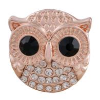 RG - SHINNING OWL