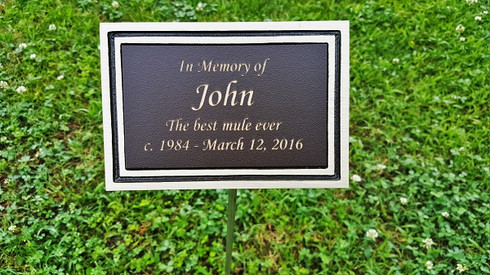 Personalized Engraved Bronze Outdoor Plaque W Stake