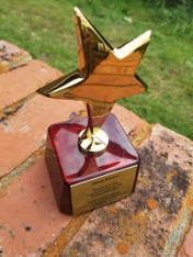 Personalized Engraved Gold Metal Star Trophy on Rosewood Base, Custom Trophy, Award Trophy, Sports Award, Party Favor, Wedding Gift