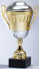 Gold/Silver Metal Cup Trophy