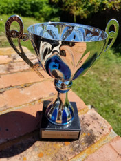 Personalized Engraved Silver/Blue Metal Cup Trophy on Marble Base, Custom Trophy, Award Trophy, Sports Award, Party Favor, Wedding Gift