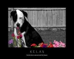 free-dog-art-thumb06.jpg
