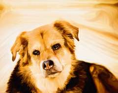 free-dog-art-thumb16.jpg