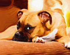 free-dog-art-thumb26.jpg