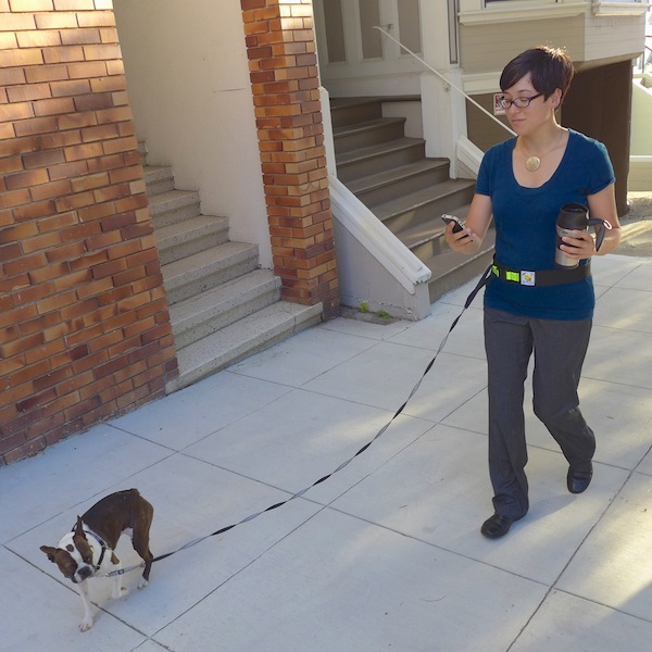 leash-belt-walking.jpg
