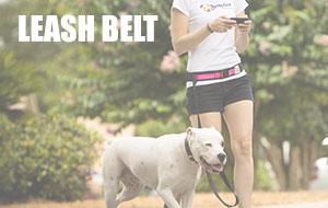 leash-belt.jpg