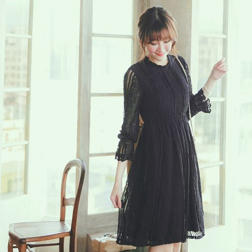 Collared A Line Lace Dress