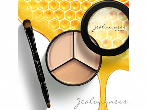 Jealousness Advanced Corrective Concealer Palette EX