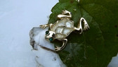 Vintage Celluloid Pearly Body Frog pin Adorable Brooch!