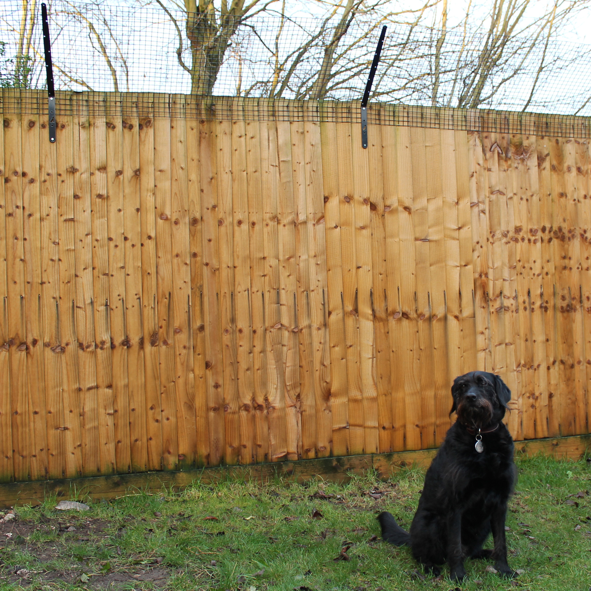 Introducing ProtectaPup: Dog Fencetop Brackets
