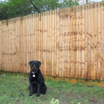 Right Corner ProtectaPet® Brackets are fitted to corner sections of fences or walls where the corner fence post is situated on the right side of the corner.