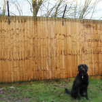 Standard ProtectaPet® Dog Fence Brackets are fitted to straight stretches of fences or walls which are 170cm (6ft) high or taller.
