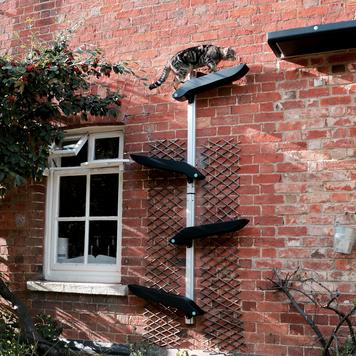 Catipilla Pro Cat Shelves, designed to mount to walls indoor or outdoor.