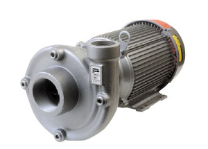 AMT Heavy Duty Stainless Steel Straight Centrifugal Pumps